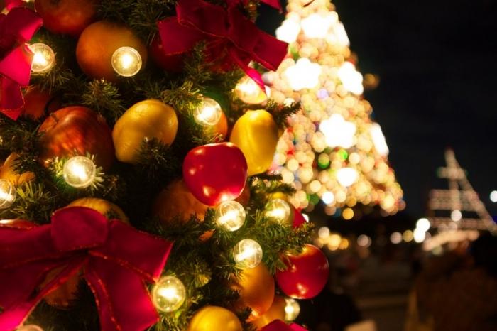 アップすぎるクリスマス写真